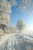 Witte weg Stock Fotografie