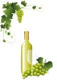 Witte wijn in een fles stock illustratie