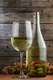 Witte wijn en druiven Stock Afbeeldingen