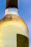 Witte wijn met blauwe hemel Royalty-vrije Stock Afbeeldingen