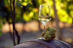 Witte wijn met druiven op een vat Royalty-vrije Stock Afbeeldingen