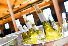 Witte wijn op ijs Royalty-vrije Stock Foto's