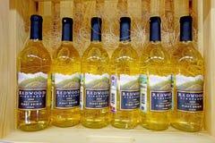 Witte wijndruif Pinot Grigio Royalty-vrije Stock Foto