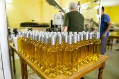 Witte wijnflessen in een wijnmakerij Royalty-vrije Stock Fotografie