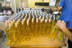 Witte wijnflessen in een wijnmakerij Royalty-vrije Stock Afbeelding