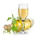 Witte wijnglas en wijnstok Stock Afbeeldingen