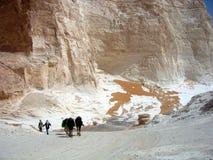 Witte woestijn Stock Afbeeldingen