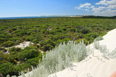 Witte Woestijn, Nationaal Zuidwestelijk Park Nambung, Royalty-vrije Stock Foto