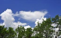 Witte Wolken tegen Panoramische Blauwe Hemel Stock Afbeelding