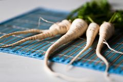 Witte wortelen Stock Afbeelding