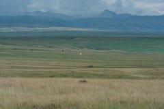 Witte yurt op de heuvel Reusachtige ruimte Bergen die in de wolken worden omhuld royalty-vrije stock foto's