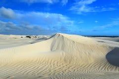 Witte zandduinen van de duinen van het Zand bij Natuurreservaat Nilgen Royalty-vrije Stock Fotografie