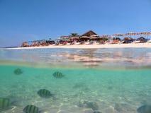 Witte zandstrand en vissen onderwater Royalty-vrije Stock Foto