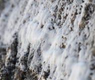 Witte zoute vorming dichtbij de gezouten lente in Parajd, Roemenië stock afbeeldingen