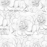 Witte zwart-wit naadloze achtergrond met rozen Stock Afbeeldingen