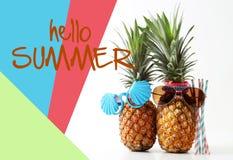 Wittebroodsweken en Vakantieconcept Paar van aantrekkelijke ananassen binnen Royalty-vrije Stock Foto