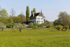 Wittigkofen城堡在牧场地后被看见 免版税图库摄影