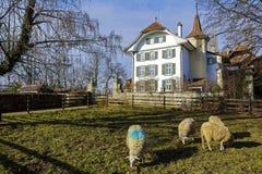 Wittigkofen宫殿在伯尔尼在瑞士 库存图片