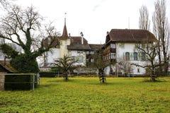 Wittigkofen宫殿,瑞士 库存图片