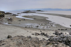 Witty lagoon. In Vancouver island, British Columbia, Canada Stock Image