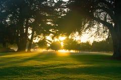 świtu kursowy golf Fotografia Royalty Free