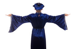 Wizard. Isolated on the wise background royalty free stock photo