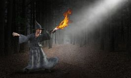 Wizard, Magic, Spell, Mystic, Forest royalty free stock photo