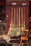 Wizard's Brooms Stock Photo