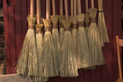 Wizard's brooms Stock Images