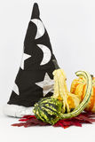 Wizard's Hat and Fancy Gourds Stock Photography