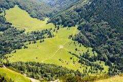 Wizerunek łąki w Vratna dolinie przy parkiem narodowym Mala Fatra, Sistani fotografia royalty free