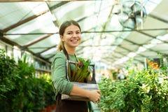 Wizerunek ładna kobiety ogrodniczka 20s jest ubranym fartuch pozycję z roślinami w rękach fotografia stock