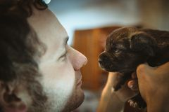 Wizerunek śliczny mały szczeniak w rękach młody człowiek Zdjęcia Royalty Free