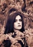 Wizerunek czarownica dla Halloween Zdjęcie Stock