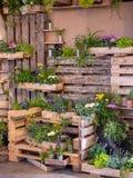 Wizerunek drewniana ściana z drewnem boksuje pełno piękni kolorowi kwiaty dekoracje obraz stock