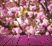 Wizerunek drewniany stół przed abstraktem zamazywał tło Sakura ogród mogą używać dla pokazu lub montażu twój produkty Zdjęcie Royalty Free