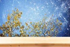 Wizerunek frontowe nieociosane drewno deski i tło złoty jesieni drzewo w lesie z błyskotliwości narzutą obrazy royalty free