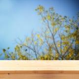 Wizerunek frontowe nieociosane drewno deski i tło złoty jesieni drzewo w lesie z retro textured narzutą Obrazy Royalty Free