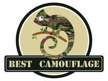 Wizerunek kameleon w kamuflaży kolorach również zwrócić corel ilustracji wektora ilustracja wektor