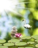 Wizerunek kamienie i lotosowy kwiat na wodnym zakończeniu, obraz stock