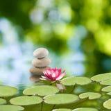 Wizerunek kamienie i lotosowy kwiat na wodnym zakończeniu, Zdjęcia Stock