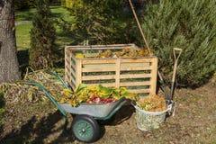 Wizerunek kompostowy kosz w ogródzie fotografia stock