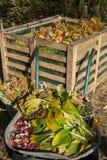 Wizerunek kompostowy kosz w ogródzie obraz stock