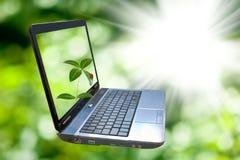 Wizerunek laptop na zielonym tle Zdjęcie Stock