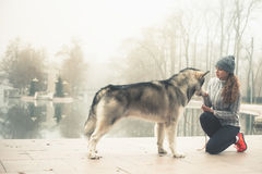 Wizerunek młoda dziewczyna z jej psim, alaskim malamute, plenerowym zdjęcie royalty free