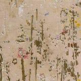 Wizerunek menchia malujący drewniany tło Obraz Stock