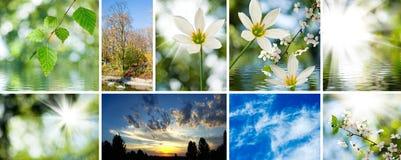 Wizerunek mieszanka piękni widoki natury zakończenie zdjęcie stock