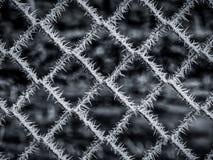 Wizerunek zamarznięty drut kolczasty w zimie zdjęcie royalty free