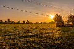 wizerunku śródpolny zielony wschód słońca Obrazy Royalty Free