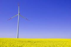 wizerunku konceptualny wiatraczek Fotografia Stock